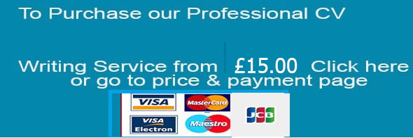 2018 professional cv writing services january sale now on